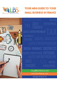 business-mini-guide-front-page